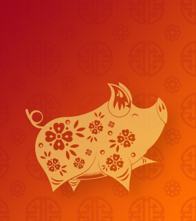 All information about our hosting services — now in Chinese